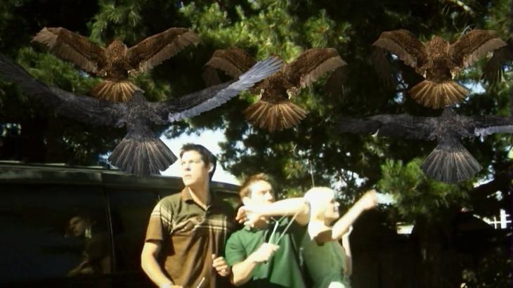 birdemic-cap-9